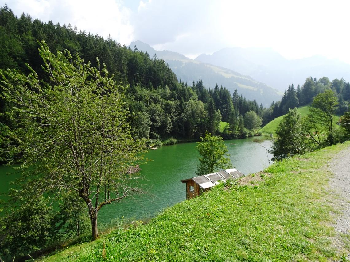 Seewald See near Fontanella